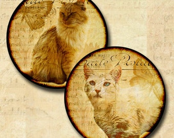 Cats Images 1 Inch Round Circles Digital Download Collage Sheet Clip Art INSTANT DOWNLOAD