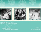 Falling Snowflakes Simple and Modern Photo Holiday Card
