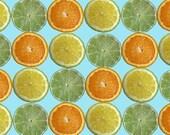 Lemons, Limes, Oranges, Oh My. Original Print Kitchen Citrus House Warming Home Decor Gift