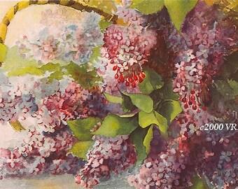 Sweet French Lilacs Print Walker Half Yard Long