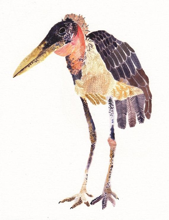 Marabou Stork - Limited Edition Print