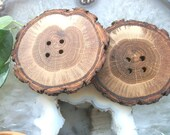 Beautiful Oak Wood Tree Branch Buttons ...2 1/2  Inch... - Lot of 2 ....Wooden Buttons for your Knitting, Crochet or Sewing