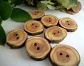 Wooden Buttons - 8 Multi-Colored Red Cedar Tree Branch Buttons - 1 to 1 1/8 inch or 29 to 32 mm - for Knitting, Crochet, Sewing Projects