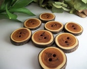 Wood Sewing Buttons - 8 English Yew Tree Branch Buttons - 1 1/4 x 1 1/8 Inch - 33 x 29 mm - Perfect for accessorizing knits,fabrics,