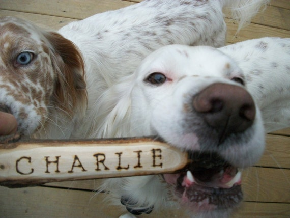 Dawg Stick - Dog Toy Wooden Throwing Stick with Instructions/ Personalized  with A Wood Burned Name for Outside Fun and Games