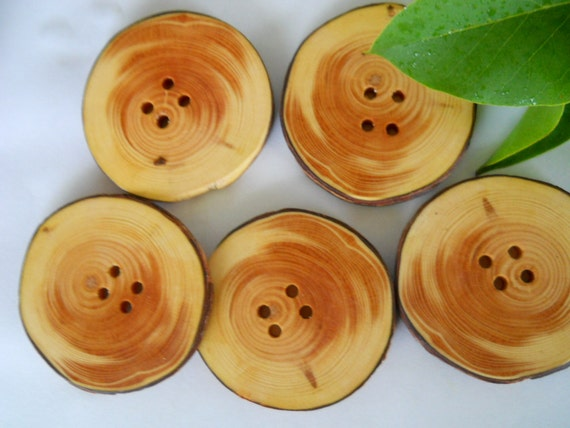 Wooden Buttons...Beautiful Jack Pine Tree Branch Buttons  - Lot of 5... 2 1/8 inch or 54  mm ..  2 holes...OOAK for Fiber Projects