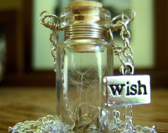 Glass Vial Necklace Glass Bottle Necklace  Make a Wish Necklace with Dandelion Seeds - 20 inches