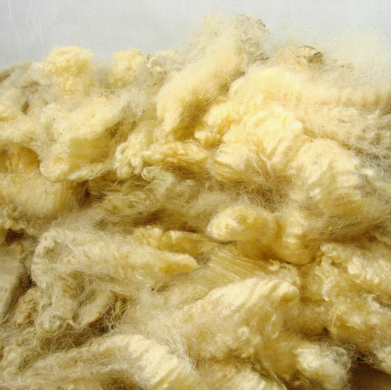 Raw BFL, Finn cross, Unwashed, Sampler, white, Washing Instructions included-- 4 oz.