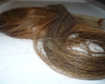 Coppery Brown Arab Horse Tail for craft projects,doll hair,add to spinning and felting
