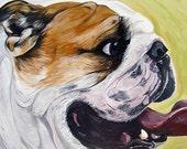 ENGLISH BULLDOG Dog Art Print bright colors yellow green 5x7