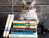 Oliver the Librarian -  Matted Fine Art Photo Print  (Library Cat)