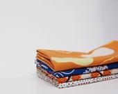 Cloth Napkins, set of 4, for picnics, dinner, washable cotton