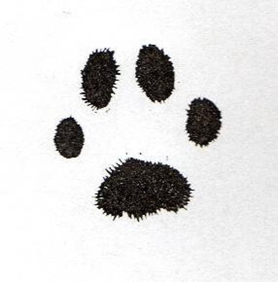 Your Pets Paw Print Hand Carved Stamp, Very Detailed Cat or Dog Paw Print Rubber Stamp, Paw Or Nose print,Rubber Stamp Animal Paw Print,