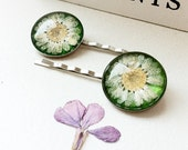 Daisy Bobby Pins Fresh as a Daisy Real Pressed Flower Silver Plated Bobby Pins - UK seller