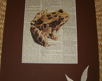 Dictionary Art Frog printed on antique dictionary book page