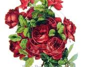 Shabby Victorian Klein Red Rose Vintage Chic Decals - De-Klein-14