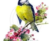 Vintage Chic Blue Bird Wild Roses Boutique Decals ms-15