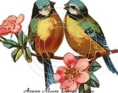 Vintage Chic Shabby Beautiful Lovely Pair Love Birds With Pink Flowers Waterslide Water Slide Decals - De-Bd-38