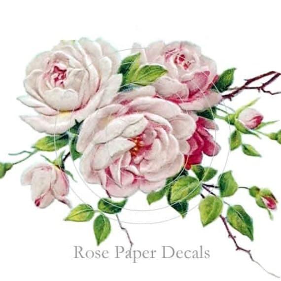 Romantic Shabby Style Pale Pink Rose Spray waterslide water slide Decals De-Ro-91