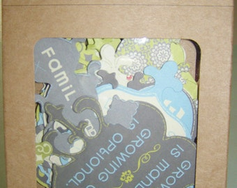 Amy Butler for K & Company   Die-Cut Cardstock 96 pieces