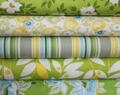 Green Nicey Jane Fabric by Heather Bailey Full Yard Bundle 5 yd Set