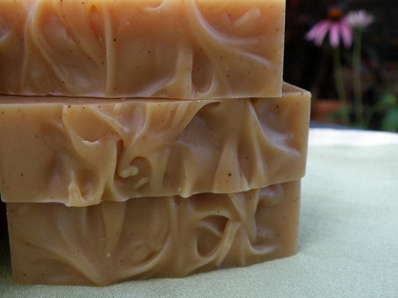 Apple Cider Soap, All Natural Handmade Soap, Herbal Soap with Mulling Spices, Christmas Soap