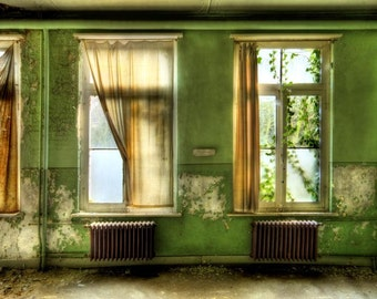 "Abandoned Building photograph belgium surreal fine art interior architecture ""Natural eVolution"""