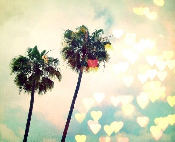 Palm Tree Bokeh (8x8)