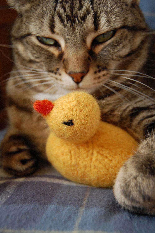 jouet pour chat canard en caoutchouc main tricot de laine. Black Bedroom Furniture Sets. Home Design Ideas