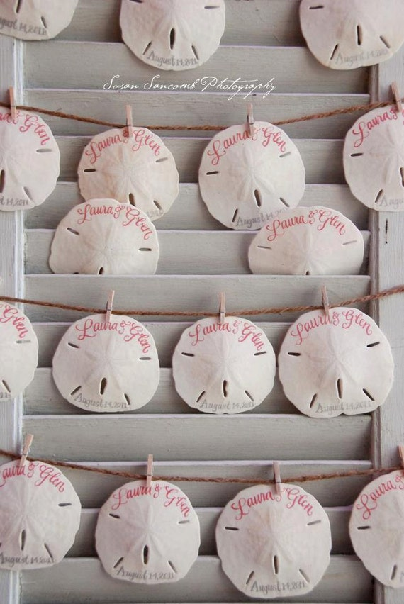 Sweet summer SAND DOLLARS and SEASHELLS for wedding favors or seating