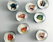 Sea Animal Marble Magnets-Set of 8