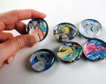 Bird Bubble Magnets, Set of 6
