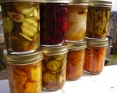 Choose Your Own (Pickle) Adventure Pack