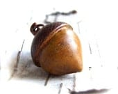 RESERVED - Saffron, Brown Patinaed Brass Acorn - Patina Necklace -Woodland - Fall Fashion