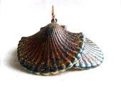 Rustic Aged Blue Rust Seashell - Patina Earrings -Sea Treasures- Patina Jewelry -Jewellery