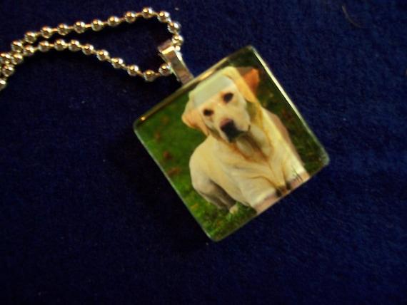 LABRADOR Retriever dog glass photo pendant charm tile necklace magnet or pin dog rescue
