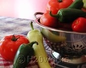 Salsa Peppers Tomatoes ACEO Print (Home Canning Series) Red, Green, Home Cooking, Kitchen