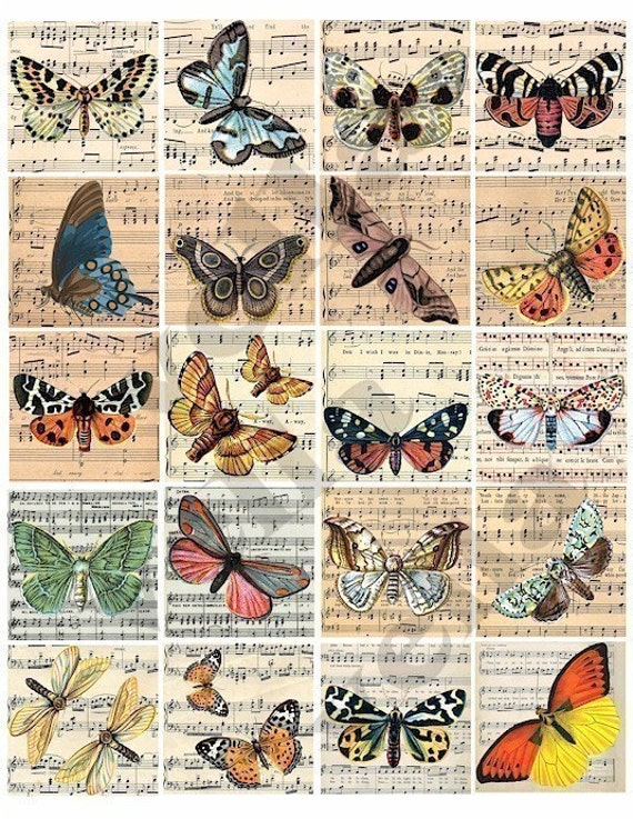 butterfly sheet music vintage ephemera clipart 2 inch squares digital download collage sheet image graphics insect nature printable