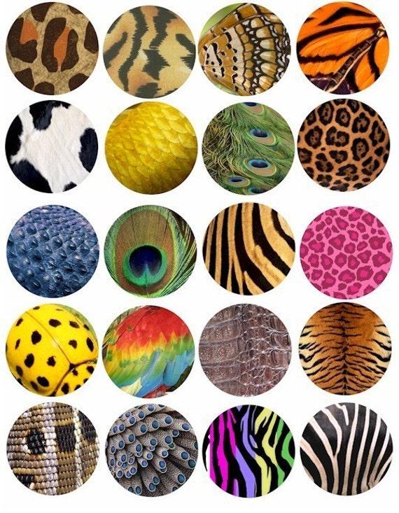animal skin patterns - photo #39