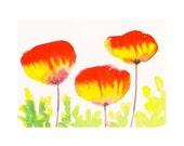 Organic Art Original watercolor painting of  Poppies by Elina Lorenz, room decor, wall art