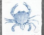 Crabby Cyanotype No. 208