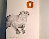 Letterpress o is for OTTER