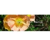 Custom Order for Maria