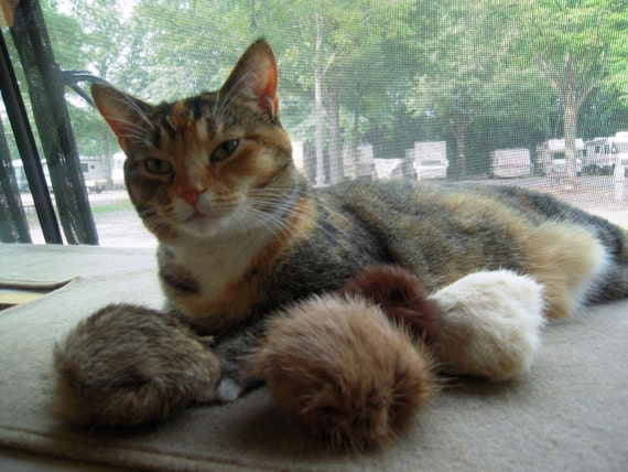 Cat Toy/ Tribbles/Recycled Fur/ Set of 3