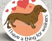 """Dachshund Doxie Pocket Mirror or Magnet - I have a thing for Weiners 2.25"""""""