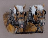 Horse Power, Signed Print from Colored Pencil Drawing, Draft Horses