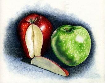 Two Apples Print by B.Bruckner