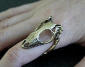 Lizard Skull Ring - Bronze Skink Skull Ring with Adjustable Jaw Band Lizard Skull Ring 078