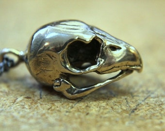 Hawk Skull Necklace - Bronze Hawk Skull Pendant Necklace Kestrel Falcon Skull 103