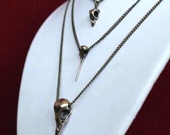 Bird Skull Necklace Cluster in Bronze